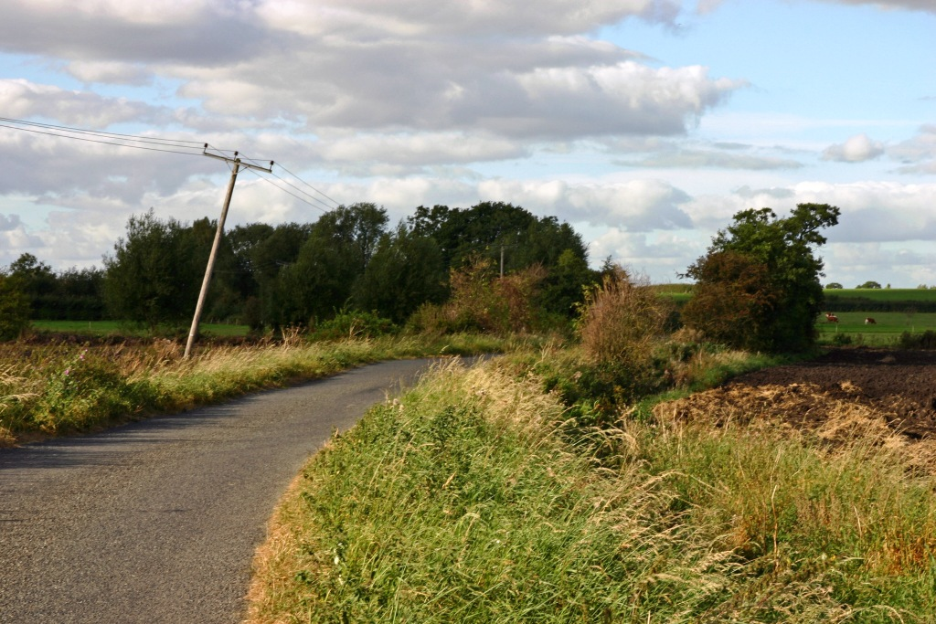 Rodway-Road-Peat-Wastage