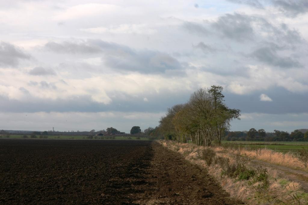 Wrockwardine-Moor-Weald-Moors-Peat-Wastage-Skirtland